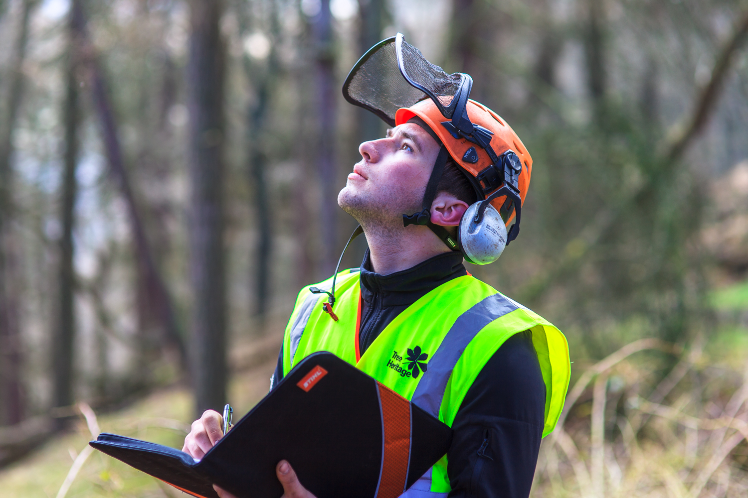 Safety-surveys-being-carried-out-within-a-woodland.