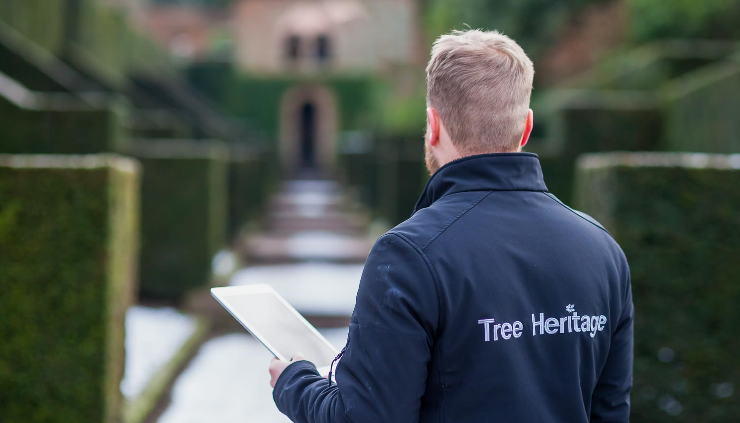 nationwide tree surveys, plans, reports for mortgages and insurance