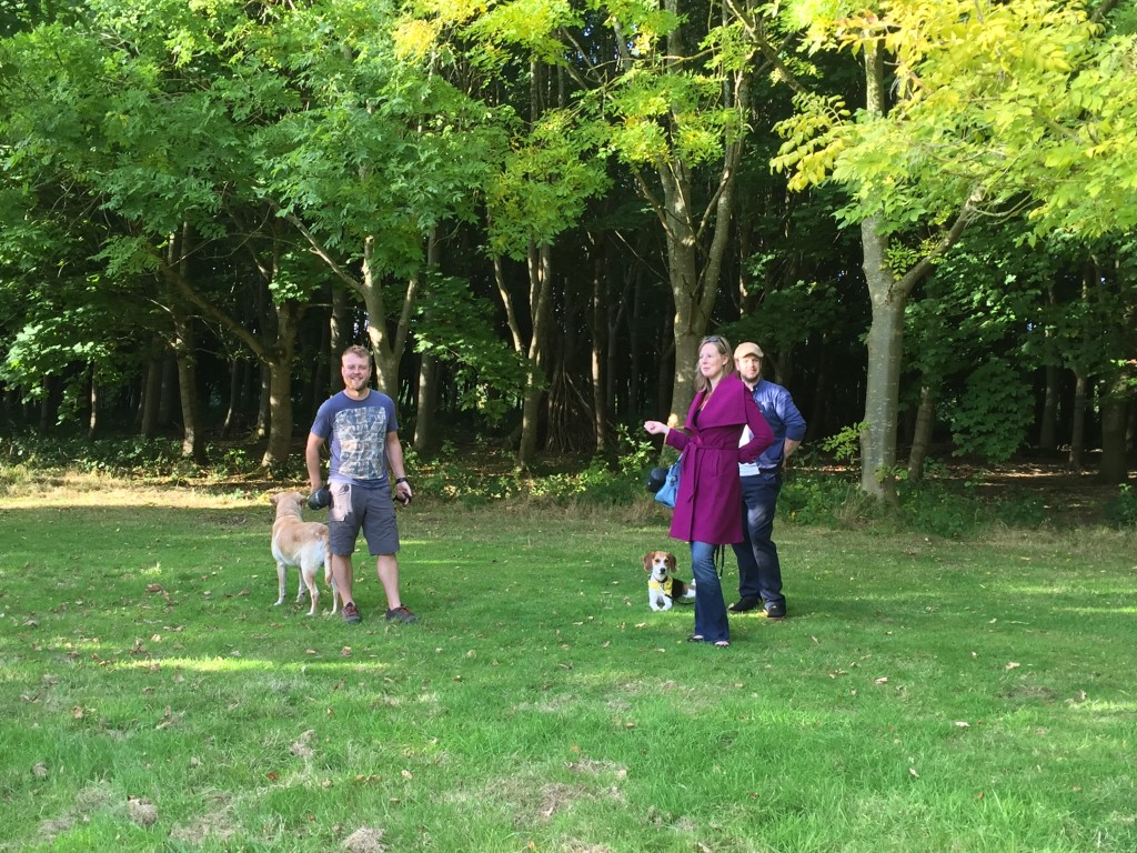 Walking-dogs-in-the-Quinta-Arboretum